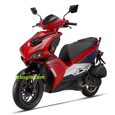 DELPHI EFI,E4,EFI,EURO 4,Motocicleta Neumatico,Motorcycle bag,VESPA,electric moped,electric motorcycle,electric scooter,moped,motorcycle,motorcycle cover,motorcycle tire,scooter