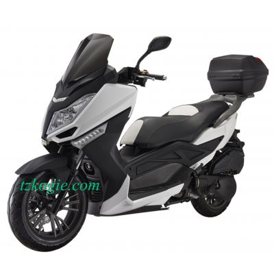 moped,motorcycle,scooter,DELPHI EFI,E4,EFI,EURO 4